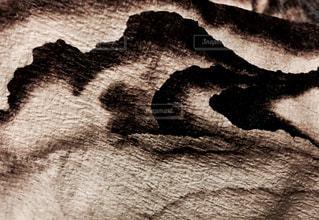 墨絵のイメージの写真・画像素材[1011228]