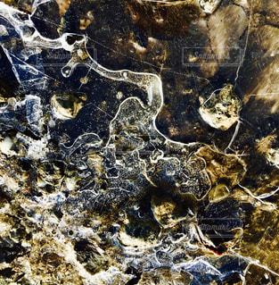 氷の模様の写真・画像素材[1011231]