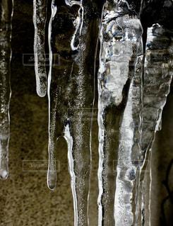 氷柱の写真・画像素材[1011233]