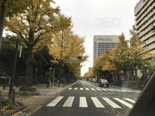 秋のヨコハマの写真・画像素材[1032678]
