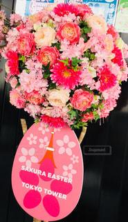 お花キレイの写真・画像素材[1067053]