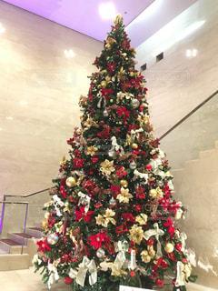 キレイなクリスマスツリーの写真・画像素材[1625788]