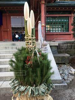 立派な門松の写真・画像素材[1014947]