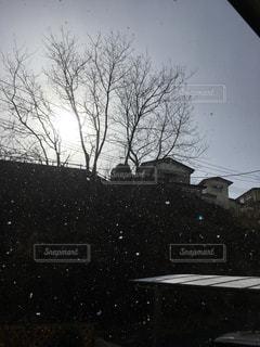 雪が降る - No.1019518