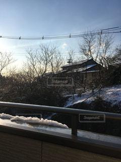 雪の朝❄️の写真・画像素材[1033839]