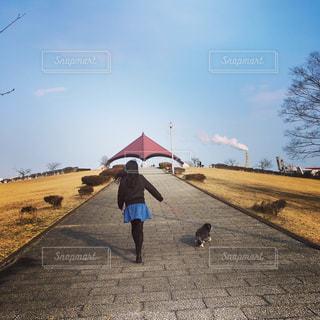 お散歩🐶の写真・画像素材[1053473]
