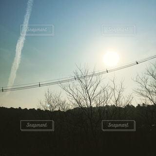 春霞と飛行機雲✈️☁️の写真・画像素材[1086869]