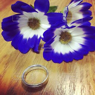 結婚記念日💒の写真・画像素材[1103038]
