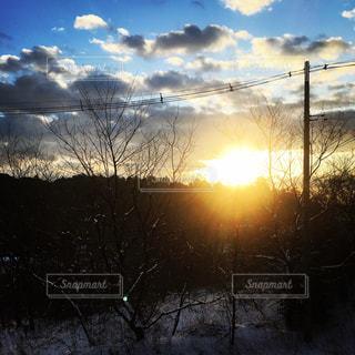 冬の朝。の写真・画像素材[1109612]