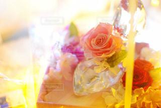 近くの花のアップ - No.1011916