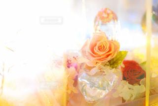 近くの花のアップ - No.1011917