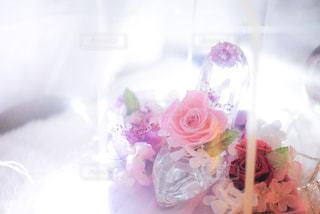 近くの花のアップ - No.1011918