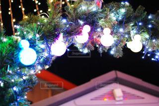 夜ライトアップされたクリスマス ツリー - No.1011924