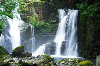 森の中の大きな滝の写真・画像素材[1011955]