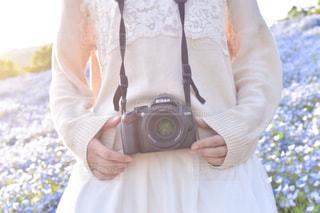 カメラ女子とネモフィラの写真・画像素材[1012005]