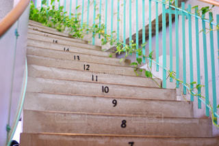 オリーブ公園内にあるカフェへの階段の写真・画像素材[1012009]