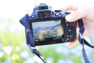 カメラとネモフィラ - No.1012024