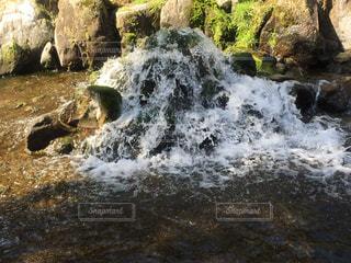 湧き水が湧くところの写真・画像素材[1012324]
