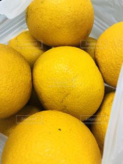テーブルの上に座ってオレンジの山の写真・画像素材[1054698]