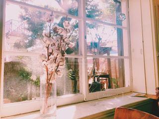 窓の前で花と花瓶の写真・画像素材[1013876]