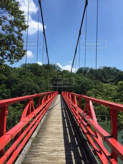 赤い吊り橋の写真・画像素材[1022351]