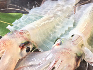 佐賀県呼子のイカの活き造りの写真・画像素材[1014750]