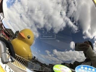 窓に反射する巨大アヒルの写真・画像素材[1013946]