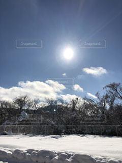 雪の写真・画像素材[1014762]