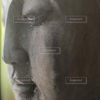 近くに馬のアップの写真・画像素材[1056434]