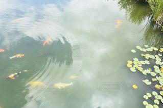 水のサーフボードで波に乗って人の写真・画像素材[1159370]