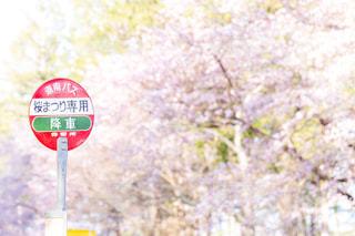 バス停の写真・画像素材[1110280]