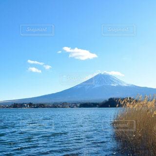 河口湖からの富士山の写真・画像素材[1017472]