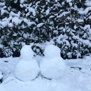 雪だるまの写真・画像素材[1017663]