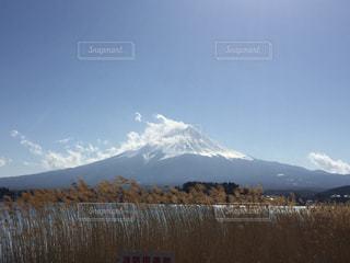 富士山の写真・画像素材[1017510]