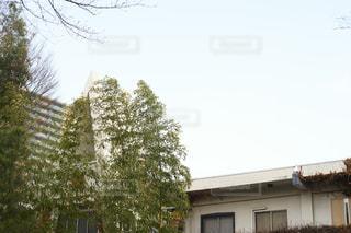 建物と空2の写真・画像素材[1026835]