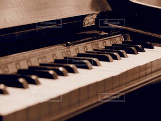 君が奏でる音の写真・画像素材[1020851]