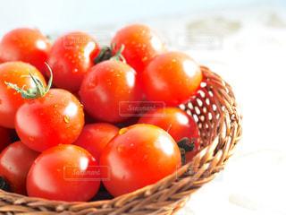 ミニトマトたちの写真・画像素材[1140296]