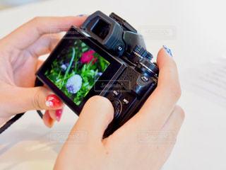 カメラが好きの写真・画像素材[1154611]