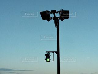 トラフィック ライトの写真・画像素材[1313077]