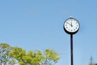 のっぽな時計の写真・画像素材[2117646]