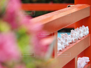 春の岡崎神社の写真・画像素材[2178854]