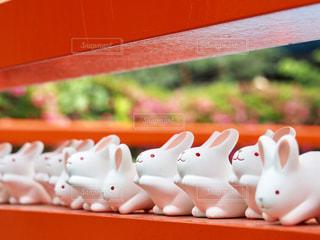 岡崎神社のうさぎさんの写真・画像素材[2178858]
