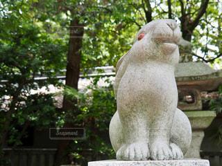狛うさぎさんの写真・画像素材[2179731]