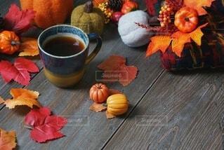 秋の彩りの写真・画像素材[4841313]