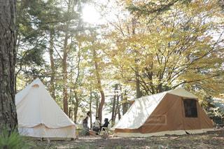 紅葉キャンプの写真・画像素材[1018652]