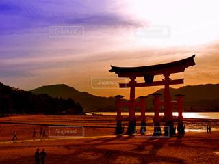 宮島の大鳥居の夕景の写真・画像素材[1022394]