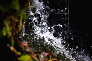 弾ける水の写真・画像素材[1043028]