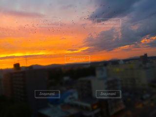 夕暮れ時に屋上から、、、の写真・画像素材[1021549]