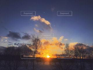 冬の夕暮れの写真・画像素材[1025136]