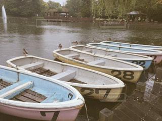 鴨とボートの写真・画像素材[1025778]